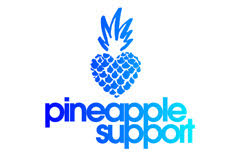Pornhub Promotion & MojoHost Infrastructure Make 12/17 A Banner Day For Pineapple Support